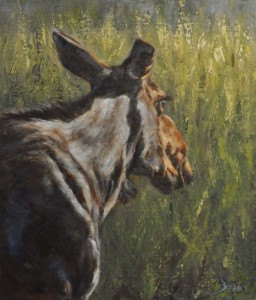 On The Lookout 21 x 18 Oil on Linen Available